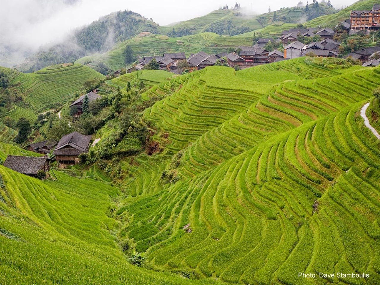 Longji Ping An Rice Terraces