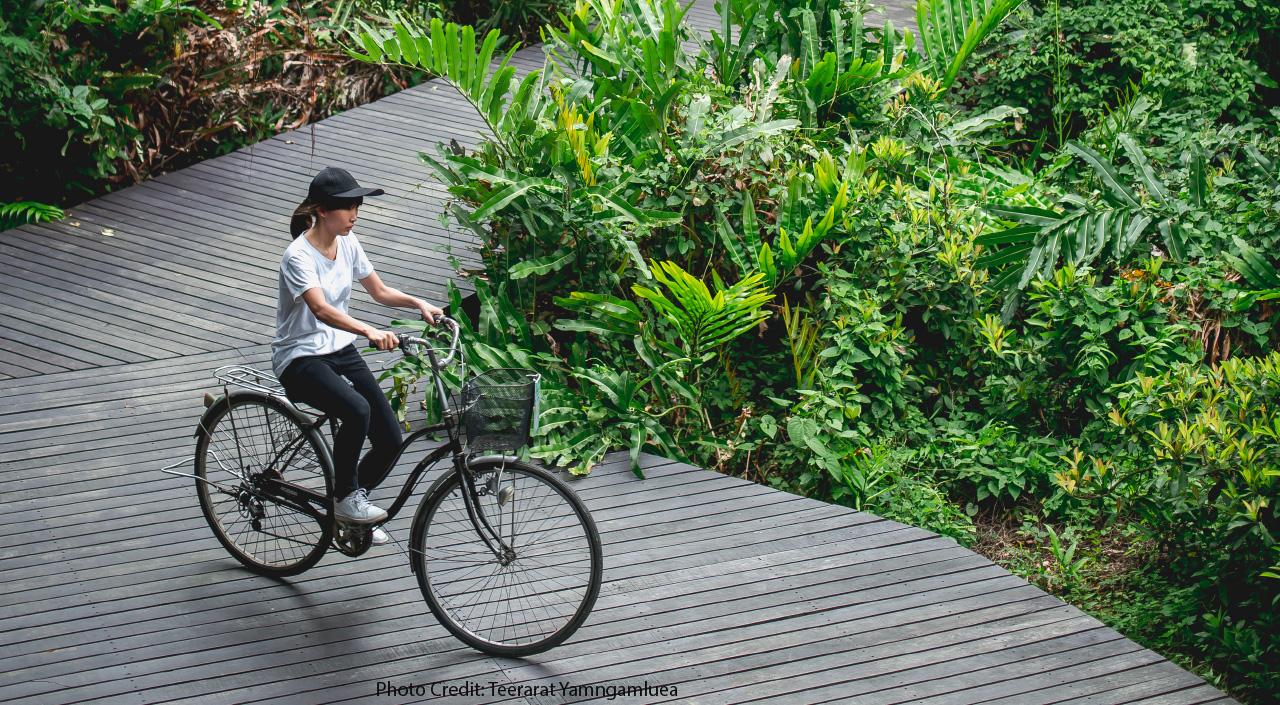 Bangkok Recreations