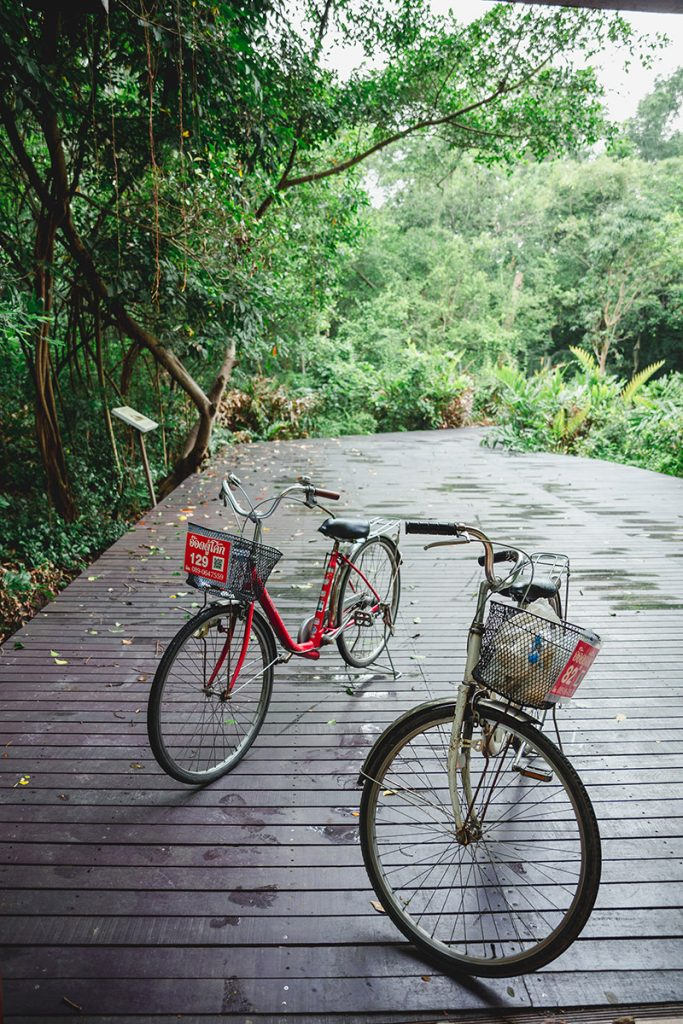 With several bike rentals, cycling is the best way for many visitors to explore Bang Krachao, aka Bangkok's 'Green Lung'