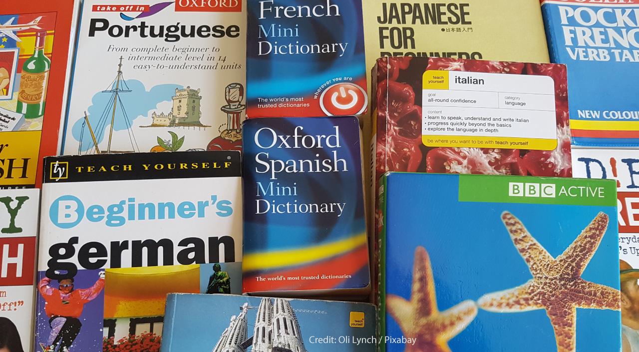 Overcoming Language Barriers