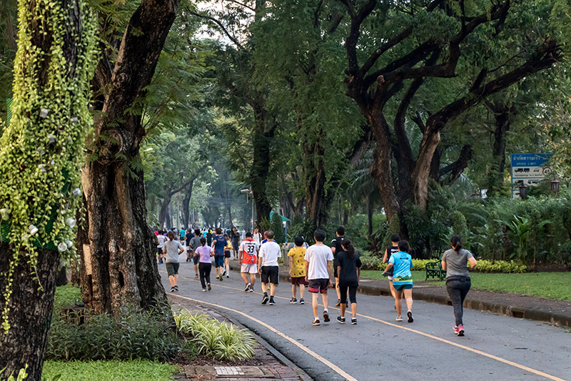 Joggers of all ages enjoy a morning run under the tree shades
