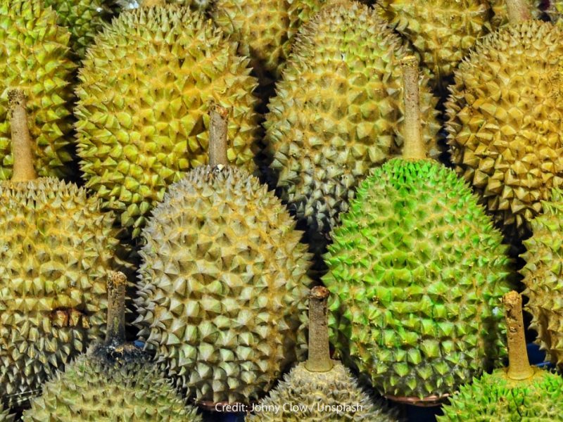 Durian: The King of Fruits